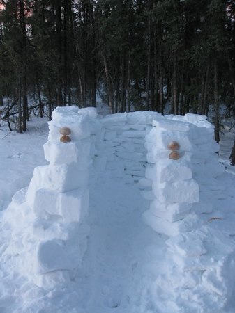 3 Dog Night Hostel:                   Snow House--we built this! : )