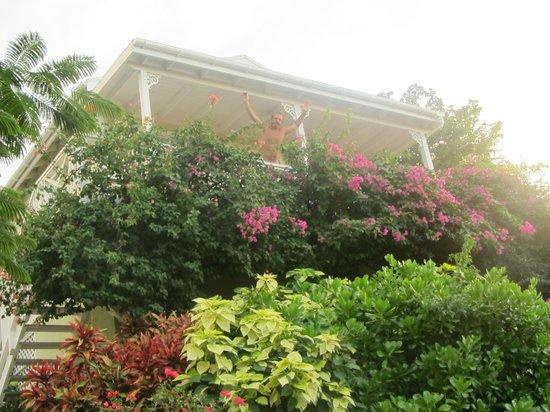Agave Landings: il cottage visto dal giardino sottostante