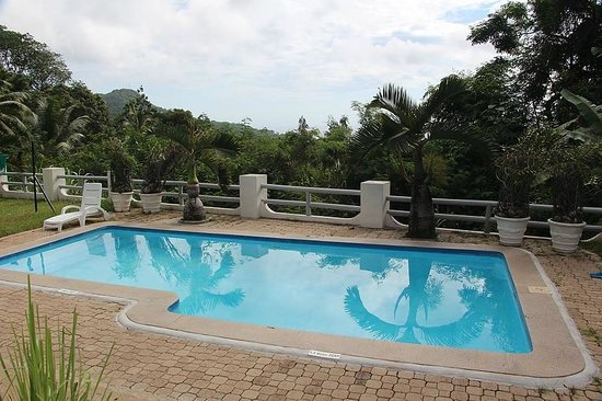 Kokogrove Chalets:                   The pool and view