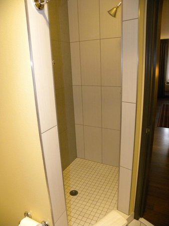 The Maxwell Hotel - A Staypineapple Hotel: Neat shower with no door