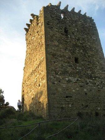 Lustignano, Italie : Torraccia - Castelluccio del Cornia