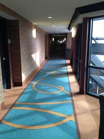 Doubletree Suites Bentonville :                   Hallway on 4th Floor