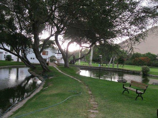 Hotel Las Dunas: Vista desde uno de los jardines que rodea el hotel