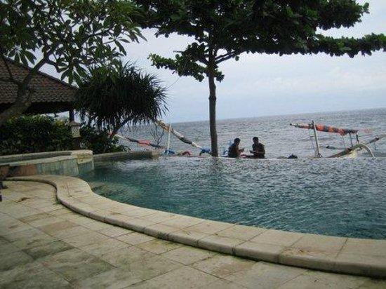 Double One Villas:                   infiniti pool