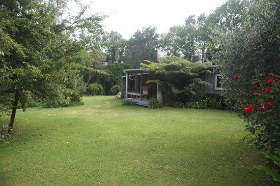 Mercury Orchard Accommodation:                   Paua Bach cottage