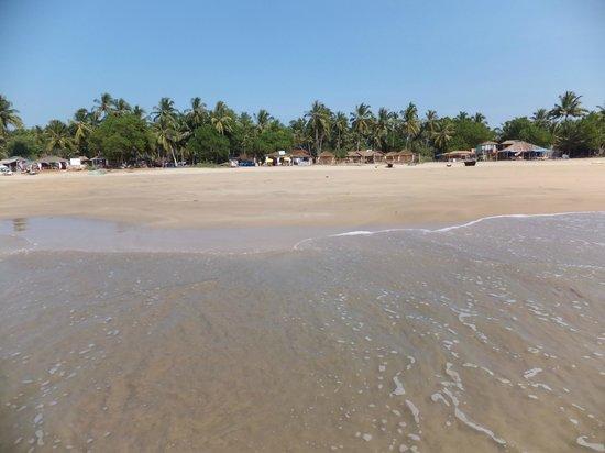 agonda beach more pics info