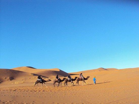 Sahara Desert Trips & Morocco Travels: Camel treks in Erg chebbi