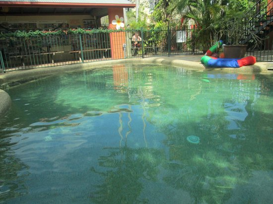Travellers Oasis Backpackers:                   Relax and enjoy garden atmosphere at the pool