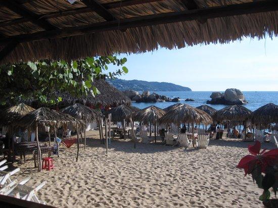 Beto's Condesa: The beach view.