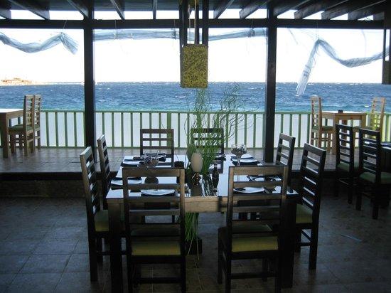 Wasabi Sushi Restaurant: Daylight view