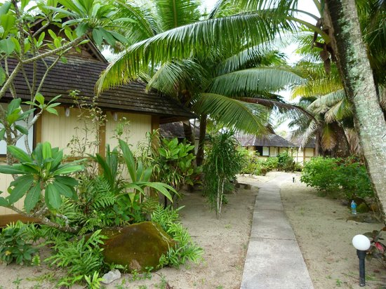 Palm Grove: Access to the Beach Huts