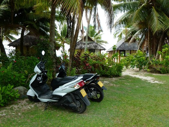 Palm Grove: Plenty of parking for scooters