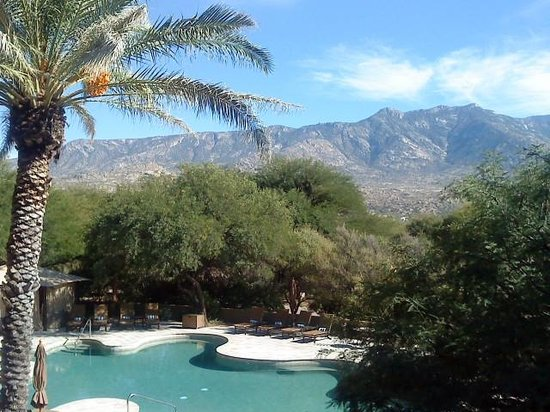 Miraval Arizona Resort & Spa: view from the spa and it's quiet room