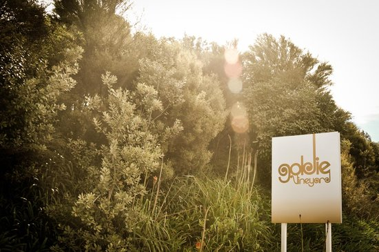 Goldie Estate: Welcome