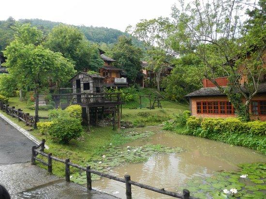 Belle Villa Resort Chiang Mai:                   landscape
