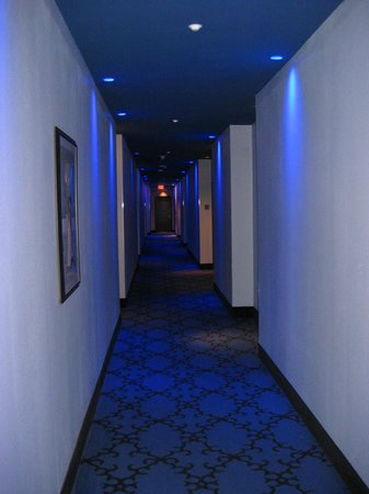 The Saint Hotel, Autograph Collection:                   Halls are lit up with blue lights