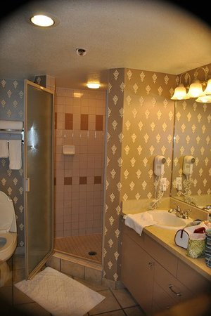 Hilton Grand Vacations on Paradise (Convention Center): Second toilet & shower