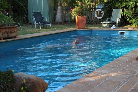 Smoky Cape Retreat: Pool
