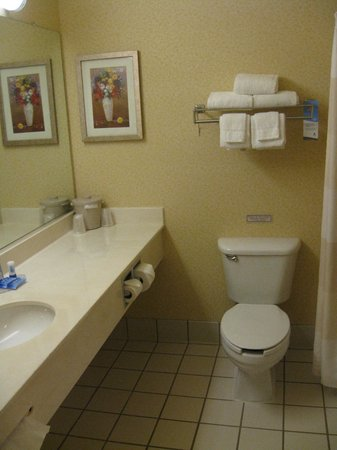 Fairfield Inn Syracuse Clay: Bathroom