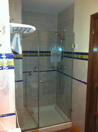 Casa Palacio Pilar del Toro Hotel: Baño con ducha