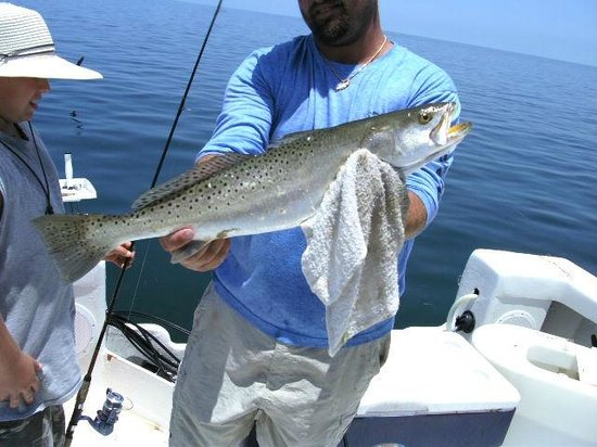 Ricador Fishing Charters: .