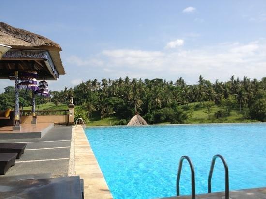 Bali Masari Villas & Spa:                   the pool overlooking the valley