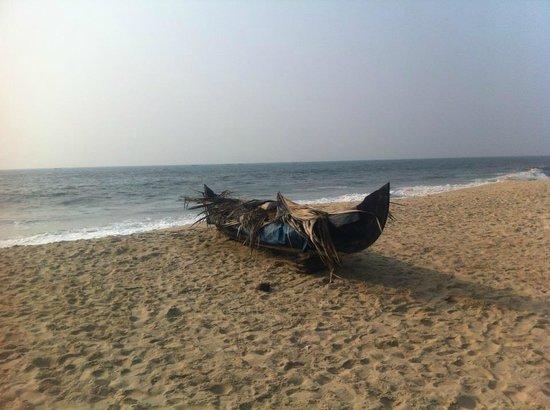 Marari Dreamz: beach