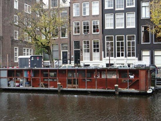 De Poezenboot