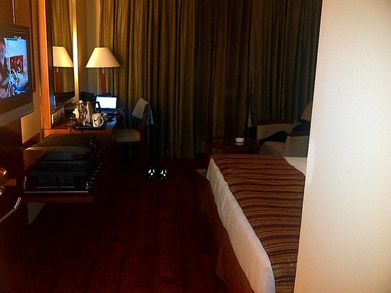Fortune Select Exotica, Navi Mumbai : My room (in the 4th floor). Excellent