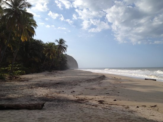 Playa La Roca Ecohotel : La Roca