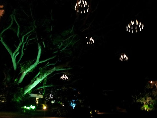 Rendezvous Resort: Chandeliers in the center tree