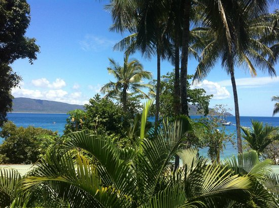 Fitzroy Island Resort: View from 222.