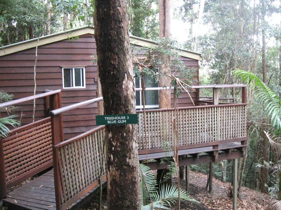 Kondalilla Eco Resort: 'our' place