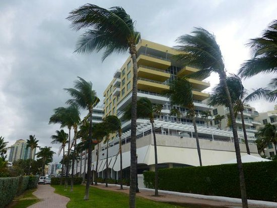 Hilton Bentley Miami/South Beach: Hotel bit windy