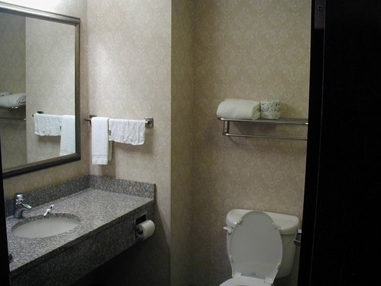 Drury Inn & Suites Cincinnati Sharonville: Partial view of bathroom