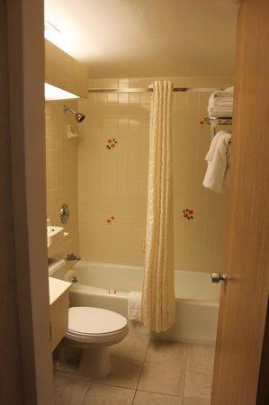 Howard Johnson Anaheim Hotel and Water Playground:                   Bathroom                 