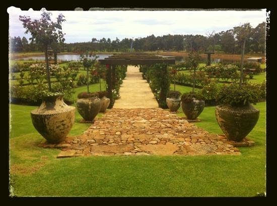 Laurance of Margaret River:                   the gardens
