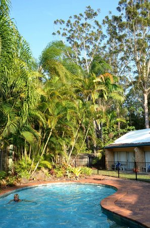 Sunshine Coast Motor Lodge : piscine