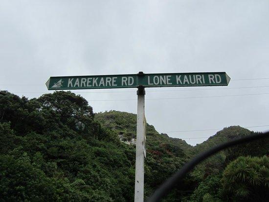Waitakere Ranges:                   KareKare