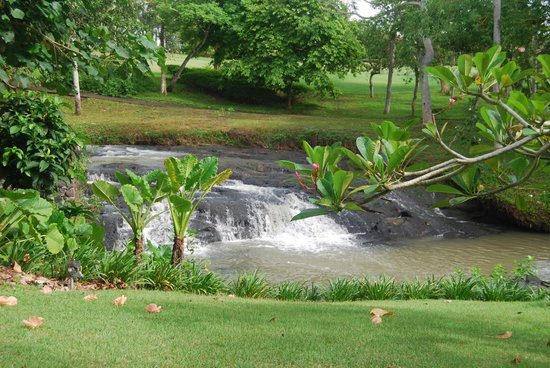 Pan Pacific Nirwana Bali Resort:                   Waterfall view from villa 717