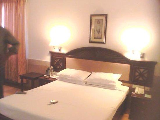 Arcadia Regency Hotel Alleppey: room at 6 floor 