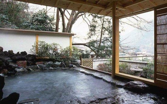 Hotel Senkei: open air bath