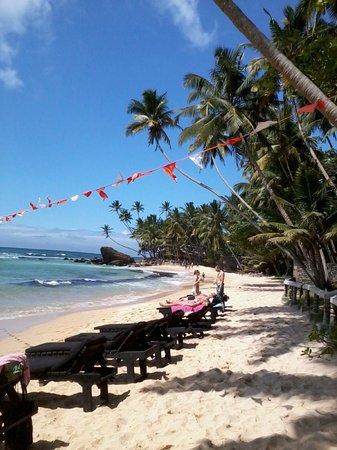 Palm Grove:                   сказочный пляж