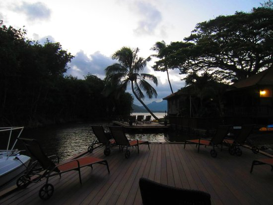 Paradise Bay Resort Hawaii:                   view from pontoon