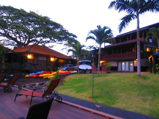 Paradise Bay Resort Hawaii:                   looking up from pontoon