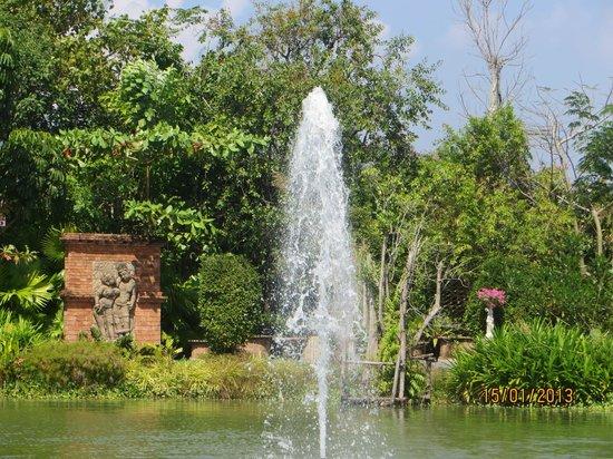 Phuket Botanic Garden : Central fountain and pond for fish feeding