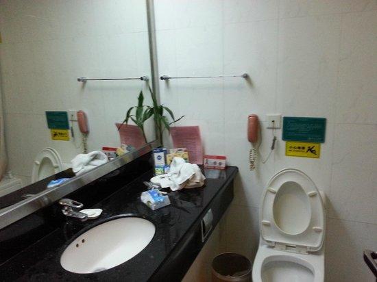 Royal Spring Hotel : Bathroom