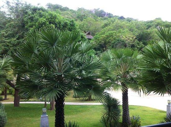 Montalay Beach Resort: Blick aus dem Zimmer