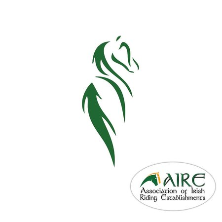 Pony Tales Stables: AIRE Approved Riding School