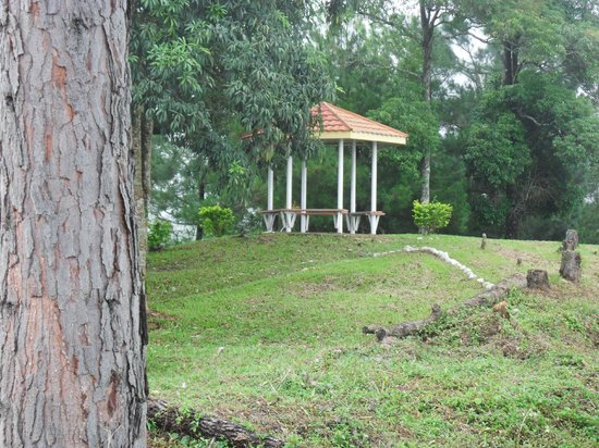 Seri Kinabalu Resort :                   view from grounds